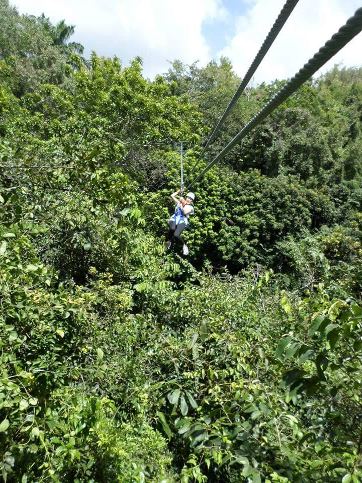zip wiring barbados